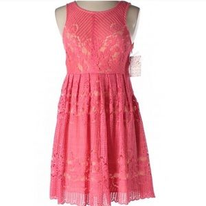 NWT Free People Rocco Pink Dress